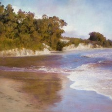 Goleta Slough by Jannene Behl / 19x25 / Pastel on Sanded Paper / Private Collection