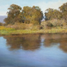 Goleta Slough Reflection II by Jannene Behl / Pastel on Sanded Paper / Private Collection