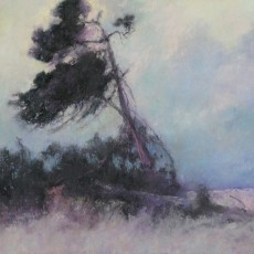 Lone Tree by Jannene Behl / 9x12 / Pastel on Sanded Paper / Private Collection
