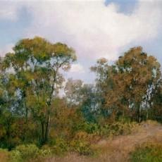 Ojai Eucalyptus by Jannene Behl / Pastel on Sanded Paper