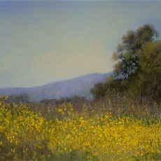 Spring Mustard by Jannene Behl / 9x12 / Pastel on Sanded Paper